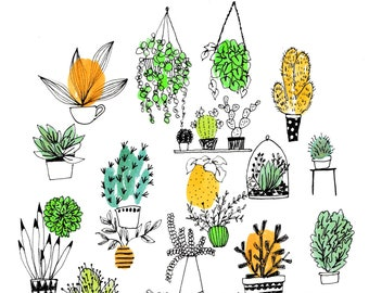 Plant and Succulents Collection A4 Print