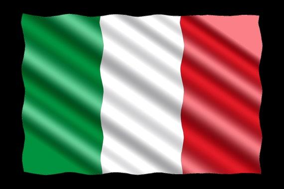 Italy Flag, Hooded Sweatshirt, Green, Red, Aesthetic Zio Hoodie, Hoody & Sweatshirt, Oversize Hoody, Teen Girl Boy, Sweatshirt Hoody Woman,