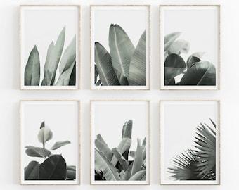 Tropical Leaf Print, Set Of 6 Prints, Palm Leaf Wall Art, Banana Leaf Print, Tropical Wall Art Leaves Prints, Plant Poster, Gallery Wall Set