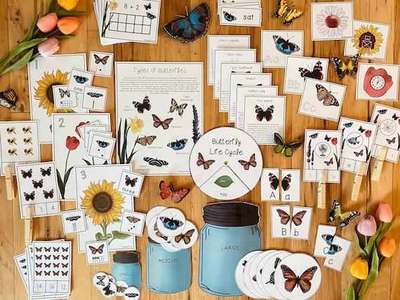 Butterfly Unit Bundle