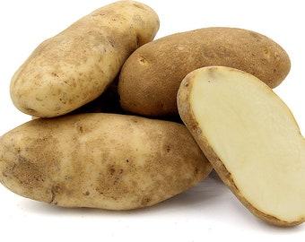 organic russet whole potatoes tubers heirloom pure natural non-hybrid  10 lbs