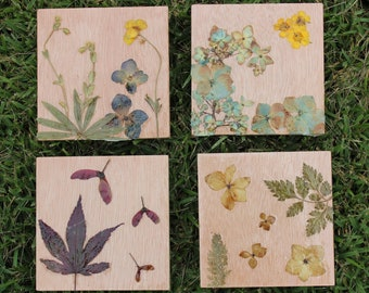 Wooden Flower Coasters, Seasons Coasters, Floral Coasters, Pressed Flower Art, Rustic Gifts, Set of 4