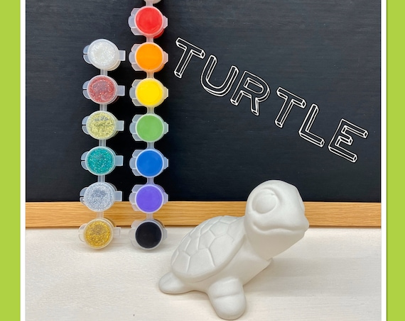 Turtle Acrylic Painting Kit