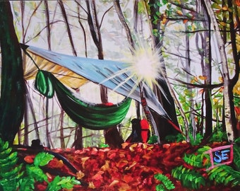 Hammock Camping Landscape  on Vermont Long Trail
