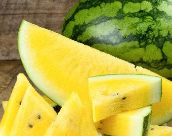 Yellow Crimson Watermelon Seeds | Organic Non GMO Heirloom USA Garden Fruit Sweet Tropical Exotic Water Melon Seed Summer For 2021 Season