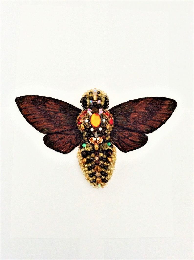 Bug Sculpture Rustic Frog Cicada Venustria Superba Bug Sculpture Wall Art Decor Dark Art Decor Entomology Art Oddities