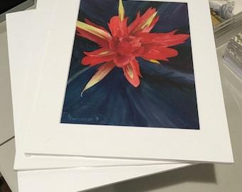 Red Paintbrush Fine Art Print