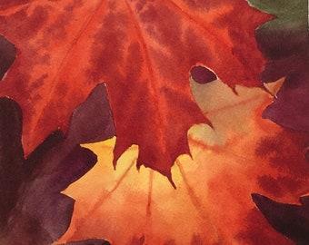 Red Maple Leaf Watercolor Fine Art Print
