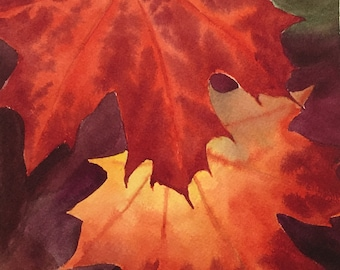 Red Maple Leaves greeting card pkg of 6