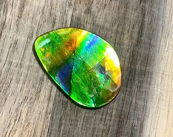 Rainbow ammolite gemstone #F110