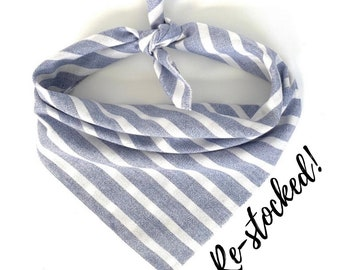 Striped Sharks Bandana Option to Personalize Over the Collar or Tie on