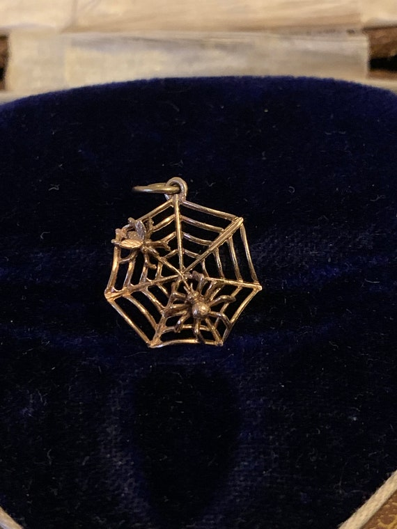 9ct Gold Vintage Spider Web with Spider & Fly Char