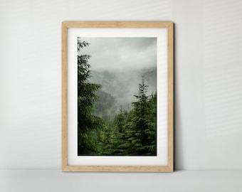 Wald mit Nebel, Österreich (Poster, Fine Art Print, Leinwand) | Landschaft, Bad Gastein