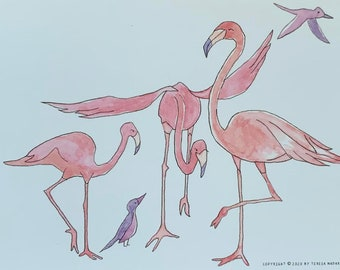 Flamingoes and Birds