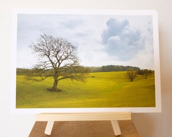 Landscape Taken In Derbyshire