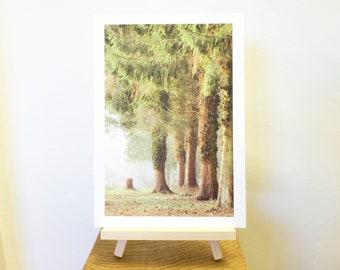 Photograph Print taken at Thornton Reservoir