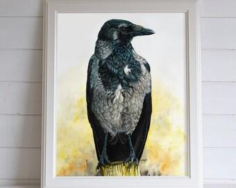 Crow original painting, hooded crow watercolor bird portrait, large bird watercolor artwork, unique bird gift, crow art wall decor artwork