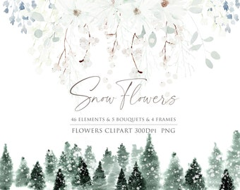 Snow flower clipart, Watercolor Winter flower, Winter snow clipart, White flower, Pinetree clipart, Winter Botanical, Watercolor flower PNG