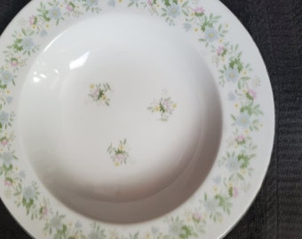 Set of 2  FOREVER SPRING by Fine China of China Dinner Plates FCCFOS