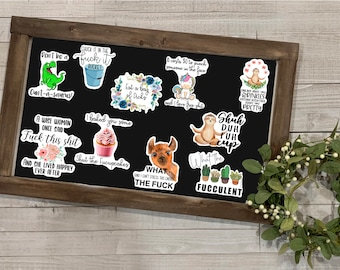 Adult Humor Sticker, Adult Humor Collection 3, Vinyl Die Cut Sticker, Mature Content, Weather Resistant Sticker, Gift for Her, Stickers