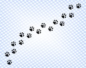 Paw svg Dog paw footprint svg Paw dog svg Paw prints svg Pet svg Paw cut file Paw dog file for Cricut Paw prints cut file Dog paw vector