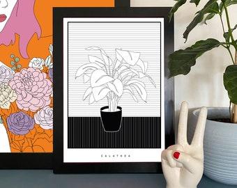 Monochrome house plant print