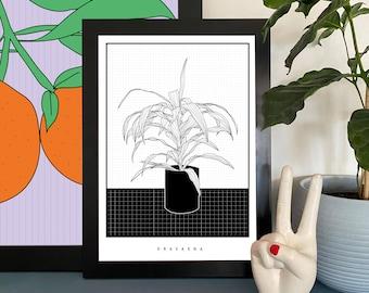 Minimal Dracaena/Spider House Plant Illustration Print