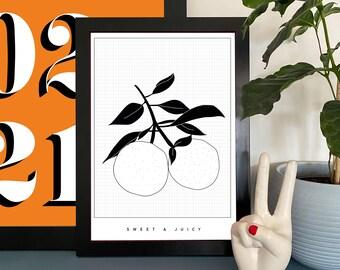 Monochrome Orange Fruit Illustration Print