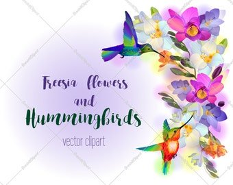Hummingbird decor freesia flower poster backgroung png, vector bird nursery decor printable, free commercial use clipart