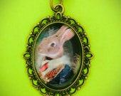 Funny Rabbit Cabochon Pendant