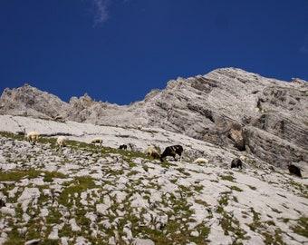 Limited Fine Art Print Photography Alpine Landscape, Gatterl Tour, Zugspitze, Nature photography, Mountains, Snow