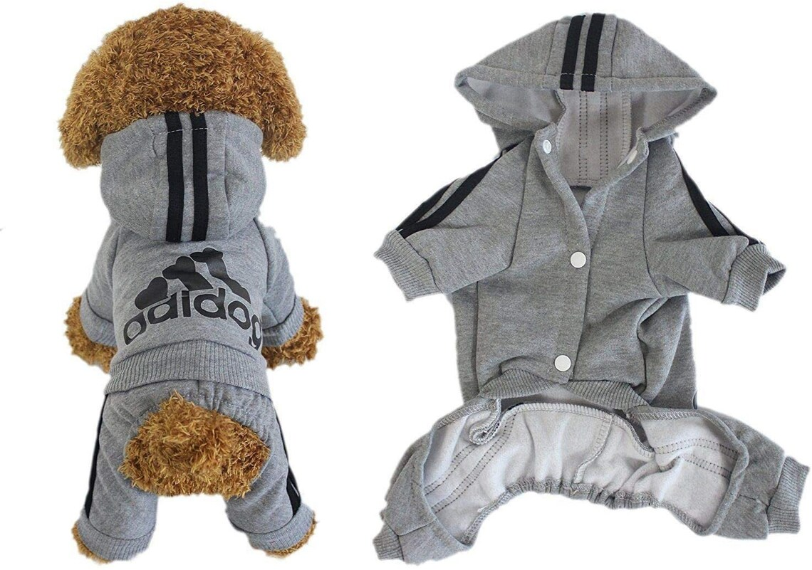 Tracksuit Sportswear for dogs puppies and cats  Winter image 0
