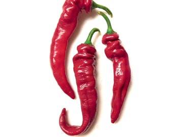 Jimmy Nardello Sweet Frying Pepper - Heirloom 20 seeds