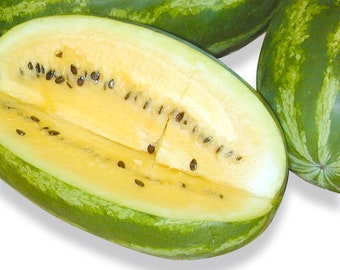 Yellow Meated Gepi Watermelon - VERY RARE heirloom 10 seeds