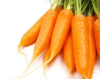 Chantenay Royal Carrot - Heirloom 25 seeds