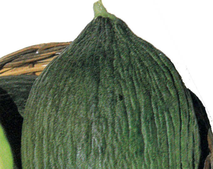 Tendral Valencian melon - RARE heirloom 10 seeds
