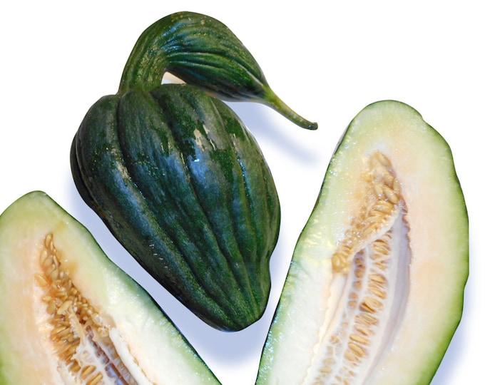 Black Swan Melon - VERY RARE heirloom 5 seeds