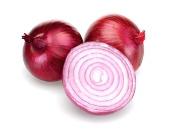 Rossa Savonese Sweet Onion - Rare Heirloom 20+ seeds