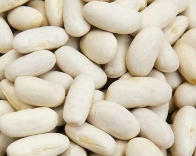 McCaslan Snap Pole Bean - RARE heirloom 20 seeds