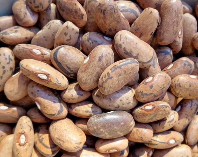 Rattlesnake Snap Bean - RARE heirloom 15 seeds