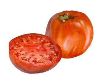 Italian Heirloom Tomato - Heirloom 10 seeds