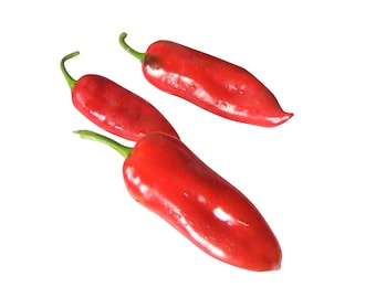Tolli's Sweet Peppers - heirloom 20 seeds
