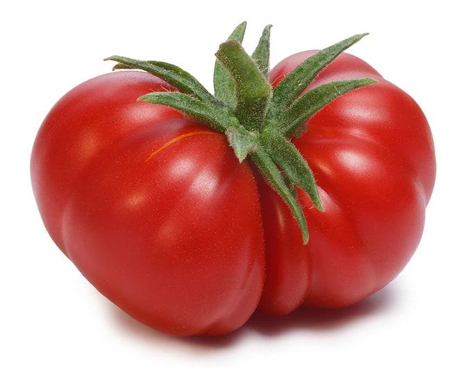 Togorific Tomato - RARE Heirloom 10 seeds