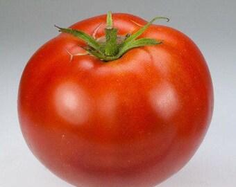 Old Brooks Tomato - Heirloom 10 seeds