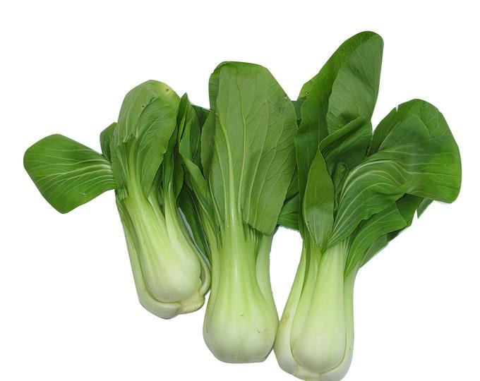 Pak Choi Lettuce - Heirloom 50 seeds