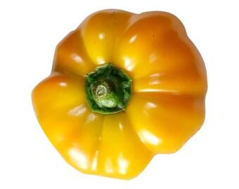 Paradicsom Alaku Sarga Szentes Sweet Pepper - RARE Heirloom 10 seeds