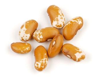 Jacob's Cattle Gold Bean - Heirloom 10 seeds