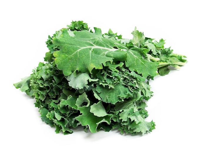 Siberian Kale - RARE Heirloom 20 seeds