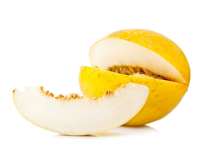 Invernale Continata Melon - VERY RARE heirloom 10 seeds