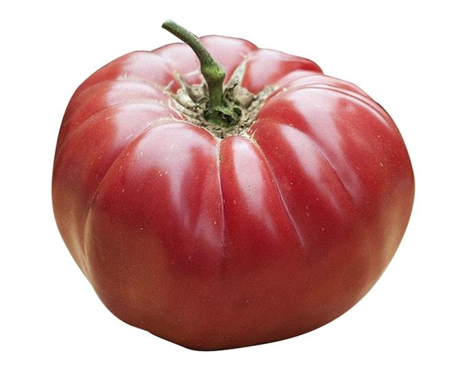 Caspian Pink Tomato - RARE heirloom 10 seeds